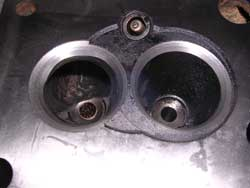 valves enlarged